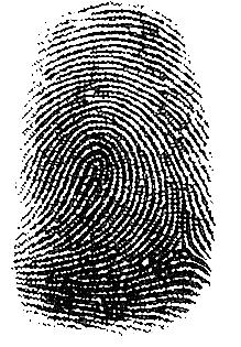Fingerprint-loop