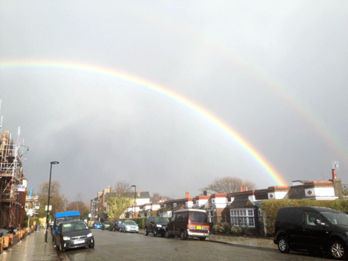 Rainbow-tulse-hill